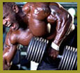 Bodybuilding Articles For Exercise And Workout